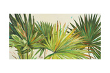 Arte Verde I Reproduction giclée Premium par Patricia Quintero-Pinto