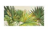 Arte Verde I Giclée-Premiumdruck von Patricia Quintero-Pinto