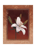 Tiger Lily Giclee Print by Vivien Rhyan