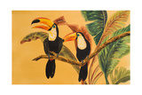 Toucans I Posters by Linda Baliko