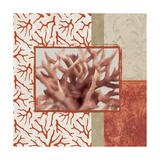 Coral Branch II Premium Giclee Print by Elizabeth Medley