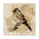 Bird Study I Premium Giclee Print by Lanie Loreth
