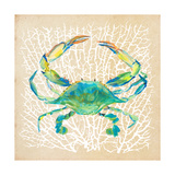 Sealife Crab Giclee Print by Julie DeRice