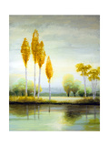 September Calm I Premium Giclee Print by Michael Marcon