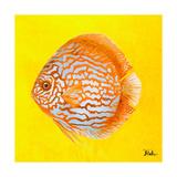 Bright Aquatic Life IV Giclée-Druck von Patricia Pinto