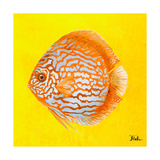 Bright Aquatic Life IV Giclee Print by Patricia Pinto