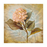 Pink Hydrangea Portrait Premium Giclee Print by Lanie Loreth