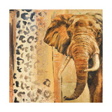 New Safari on Gold Square IV Premium Giclee Print by Patricia Quintero-Pinto