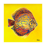 Bright Aquatic Life I Giclee Print by Patricia Pinto