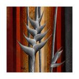 Heliconias and Stripes III Premium Giclee Print by Patricia Quintero-Pinto