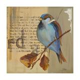 Blue Love Birds I Premium Giclee Print by Patricia Quintero-Pinto