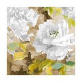 White Modern Peonies I Premium Giclee Print by Lanie Loreth