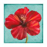 Joyful Hibiscus Premium Giclee Print by Patricia Quintero-Pinto