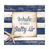 Salty Air Premium Giclee Print by Elizabeth Medley