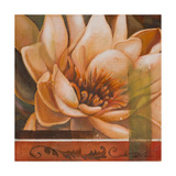 Flor de Loto II Giclee Print by Nelly Arenas