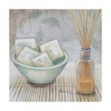 Zen Bath II Premium Giclee Print by  Hakimipour-ritter