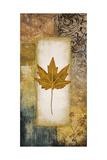Single Leaf I Premium Giclee Print by Michael Marcon