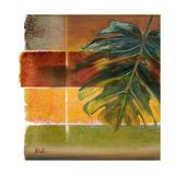 Morning Light II Premium Giclee Print by Patricia Quintero-Pinto