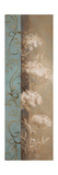 Delicate Beauty in Blue III Premium Giclee Print by Lanie Loreth
