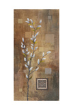 Willow Branch I Premium Giclee Print by Michael Marcon
