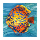 Aquatic Life II (Vibrant Sea Life IV) Premium Giclee Print by Patricia Quintero-Pinto