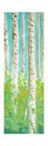 Vibrant Birchwood I Premium Giclee Print by Walt Johnson