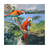 Parrots at Bay II Stampa giclée di Jane Slivka
