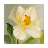 Daffodil Sky I Premium Giclee Print by Lanie Loreth
