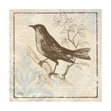 Bird Woodcut II Reproduction giclée Premium par Elizabeth Medley