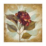 Aubergine Hydrangea Portrait Premium Giclee Print by Lanie Loreth