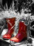 Rain Boots Border Photographic Print by Emily Navas