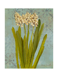 Hyacinth on Teal II Premium Giclee Print by Lanie Loreth