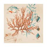 Coral Medley I Premium Giclee Print by Lanie Loreth