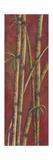 Roter Bambus I Poster von Patricia Pinto