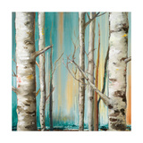 Birch Forest II Premium Giclee Print by Patricia Quintero-Pinto
