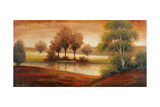 Gleaming Landscape Premium Giclee Print by Michael Marcon