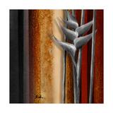 Heliconias and Stripes IV Premium Giclee Print by Patricia Quintero-Pinto