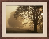 Autumn Morning, Near Dryman, Stirling, Scotland Framed Photographic Print