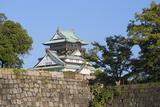 Osaka Castle, Osaka, Kansai, Japan Photographic Print by Ian Trower