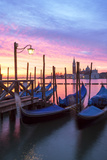 Italy, Venice. Gondolas Moored on Riva Degli Schiavoni at Sunrise Photographic Print by Matteo Colombo