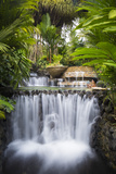 Costa Rica, Alajuela, La Fortuna. Hot Springs at the Tabacon Grand Spa Thermal Resort Photographic Print by Nick Ledger