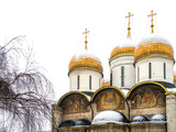 Domes of the Assumption Cathedral in Kremlin, Moscow, Russia Photographic Print by Nadia Isakova