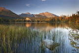 Strbske Pleso Lake in the Tatra Mountains, Slovakia, Europe. Autumn Photographic Print by Adam Burton
