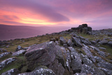 Spectacular Pink Sunrise Above Belstone Tor, Dartmoor, Devon, England. Winter Photographic Print by Adam Burton