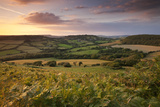 Rolling Dorset Countryside Viewed from Golden Cap, Dorset, England. Summer Photographic Print by Adam Burton