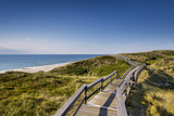Wodden Path in the Dunes, Wenningstedt, Sylt Island, Northern Frisia, Schleswig-Holstein, Germany Photographic Print by Sabine Lubenow