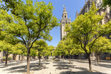Spain, Andalusia, Seville. Patio De Los Naranjos in the Cathedral and Giralda Tower Photographic Print by Matteo Colombo