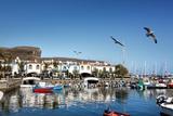 Marina, Puerto De Mogan, Gran Canaria, Canary Islands, Spain Photographic Print by Sabine Lubenow