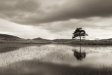 Kelly Hall Tarn at Twilight, Lake District, Cumbria, England. Autumn (November) Photographic Print by Adam Burton