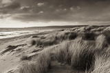 Windswept Sand Dunes on the Beach at Studland Bay, with Views Towards Old Harry Rocks, Dorset Photographic Print by Adam Burton